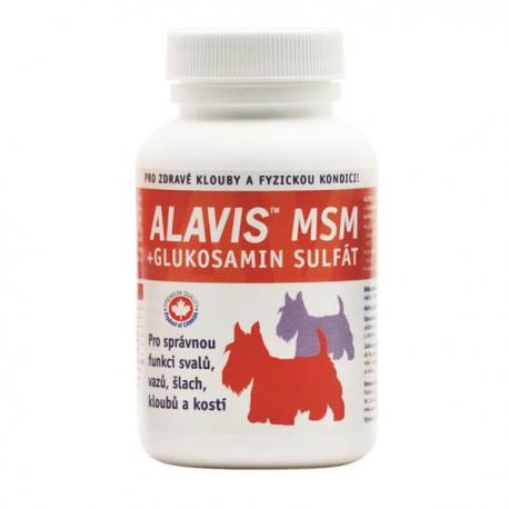 ALAVIS MSM + Glukosamin sulfát 60 tbl.