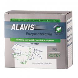 ALAVIS Enzymoterapia