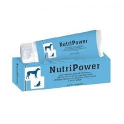 NutriPower pasta 70 g