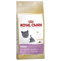 Royal Canin KITTEN BRITSKÁ